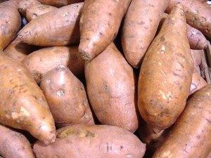 sweet-potato-21
