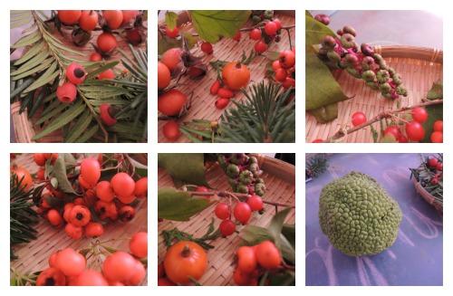 colaj fructe